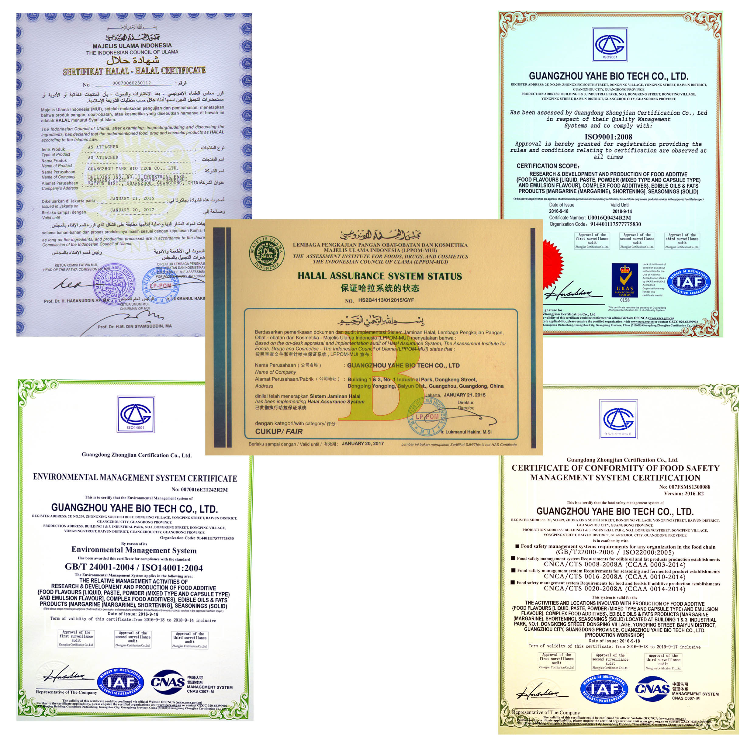 Company Certificates; High quality