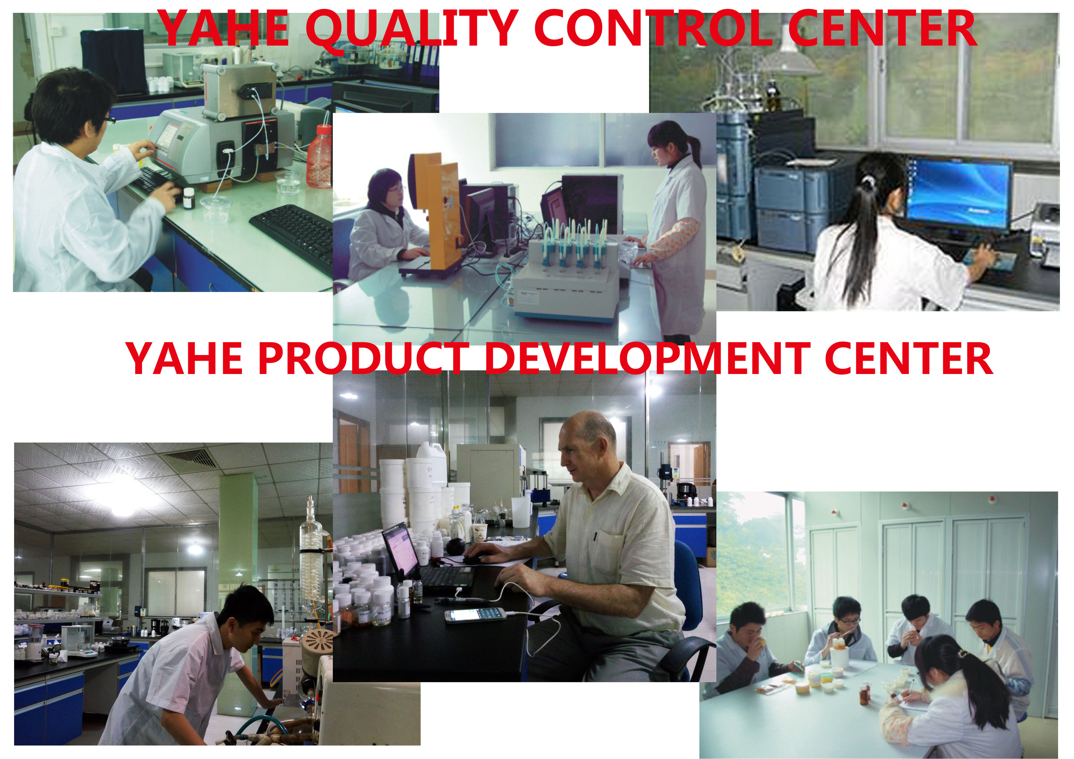 YAHE flavor & fragrance R&D department and QC team